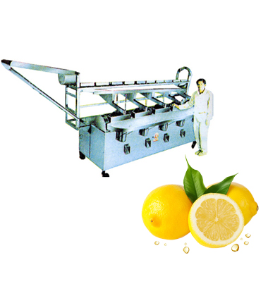 Lemon / Lime Grading and Cutting Machines